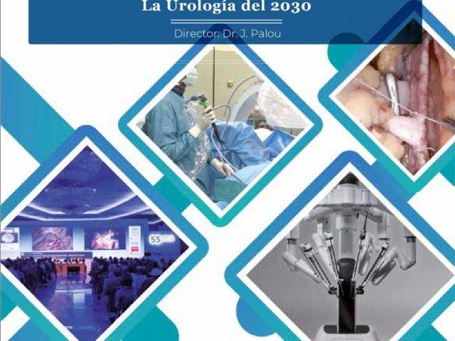 56-curso-de-urologia-puigvert